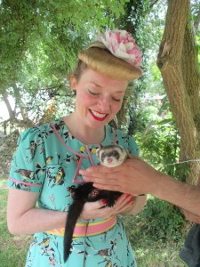Making Friends with a ferret